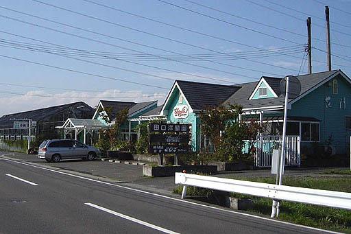 田口洋蘭園