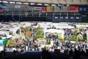 年に一度の蘭の祭典!世界最大規模の大型国際らん展「世界らん展 日本大賞 2018」に行ってきました