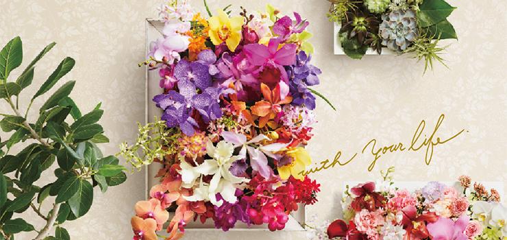 世界らん展2019 -花と緑の祭典-