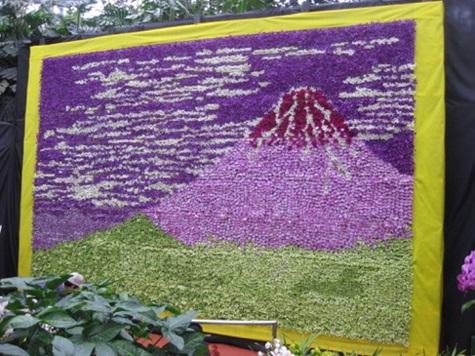 世界の蘭と熱帯の花フェスタ