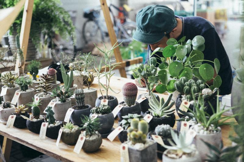 Flower & Green Market