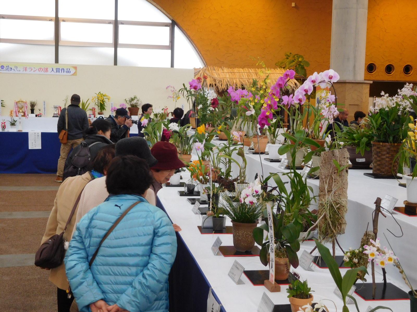 第47回富山県蘭まつり大会
