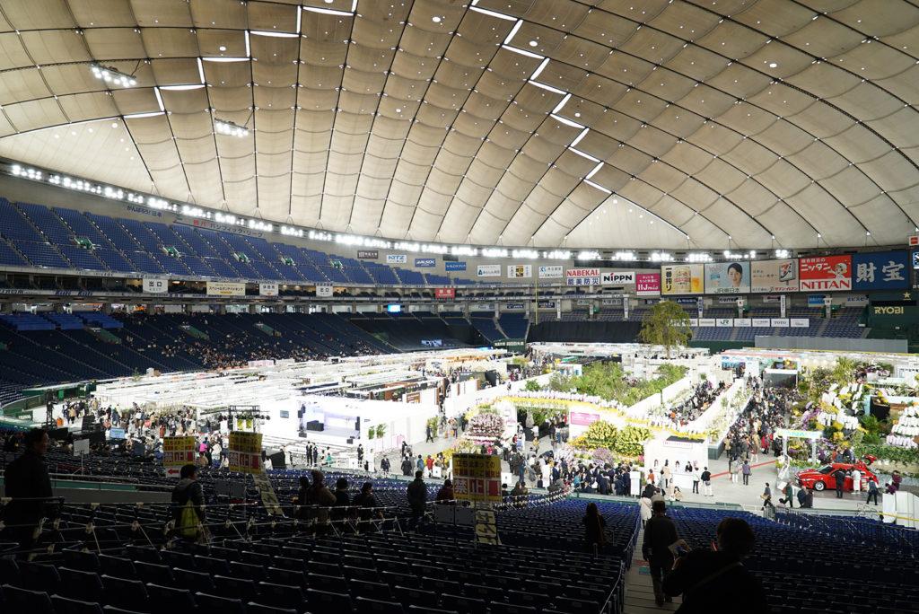 世界らん展2019