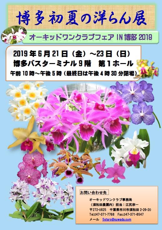 博多初夏の洋らん展 第36回オーキッドワンクラブフェアIN博多2019
