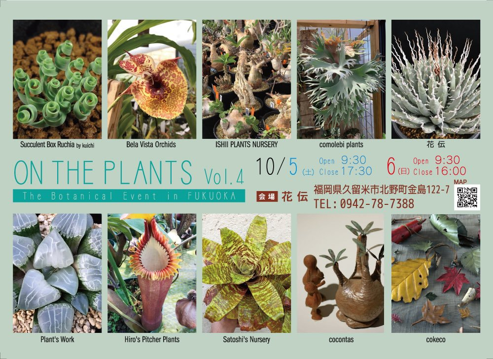 ON THE PLANTS Vol.4