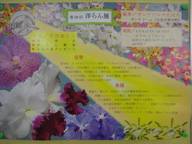 第58回春の洋蘭展 豊橋蘭友会