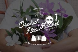 オーキッドフリーマーケット2020 出店のお知らせ