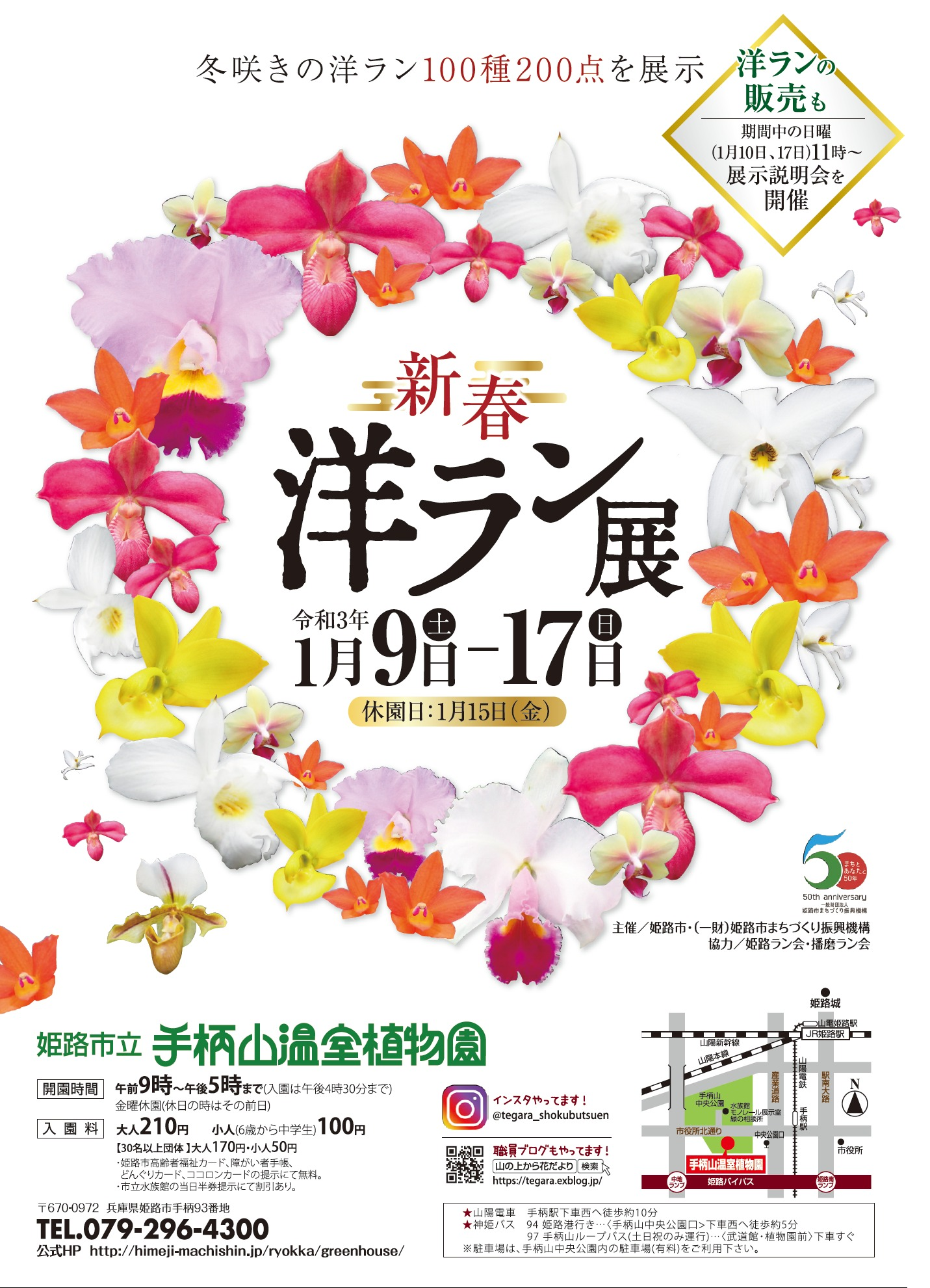 手柄山温室植物園 新春洋蘭展