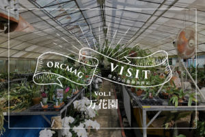 ORCMAG VISIT -僕たちの蘭園訪問記- Vol.1万花園