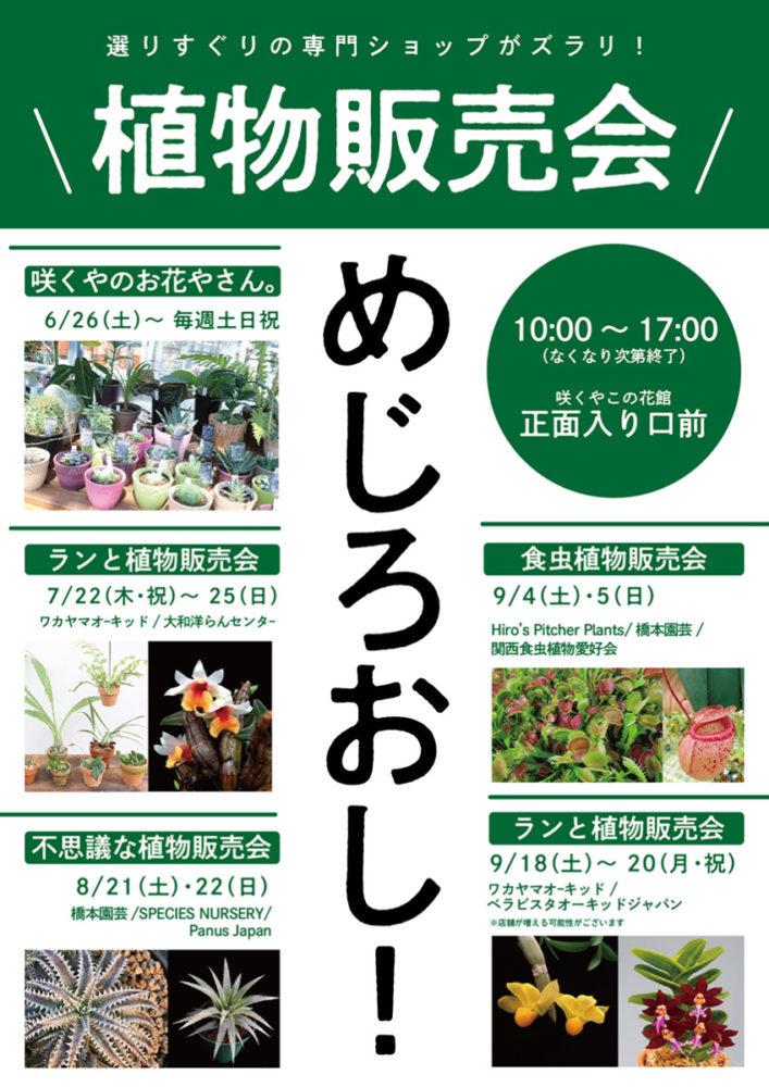 咲くやこの花館 植物販売会